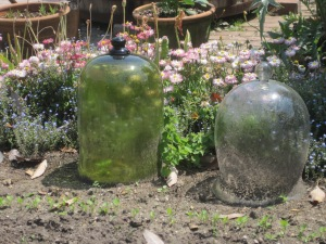 Gardens, Willamsburg